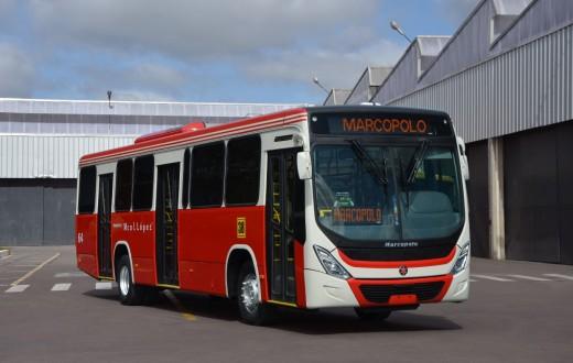 Ônibus Novo Torino, da Marcopolo, entregue ao mercado paraguaio